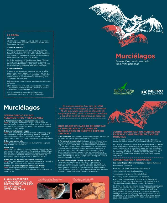 triptico_murcielagos-1
